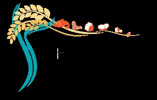 Food Allergy Center for Treatment
